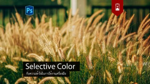 selectiveColor