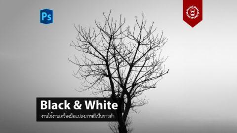 แปลงภาพสีเป็นขาวดำด้วยเครื่องมือ Black & White