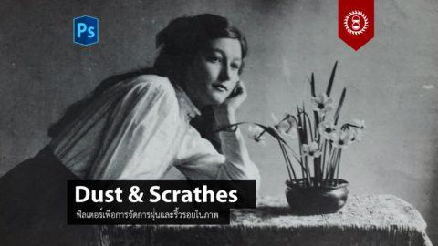 การใช้งานฟิลเตอร์ Dust & Scrathes