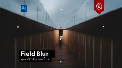 การใช้งานฟิลเตอร์ Field Blur