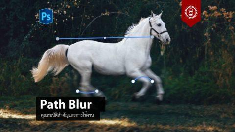 การใช้งานฟิลเตอร์ Path Blur