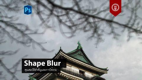 การใช้งานฟิลเตอร์ Shape Blur