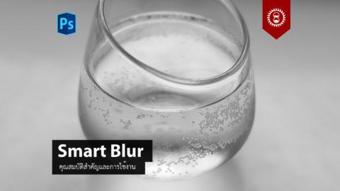 การใช้งานฟิลเตอร์ Smart Blur