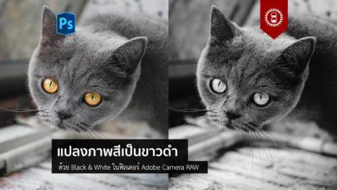 แปลงภาพสีเป็นขาวดำด้วยเครื่องมือ Black & White ใน ACR